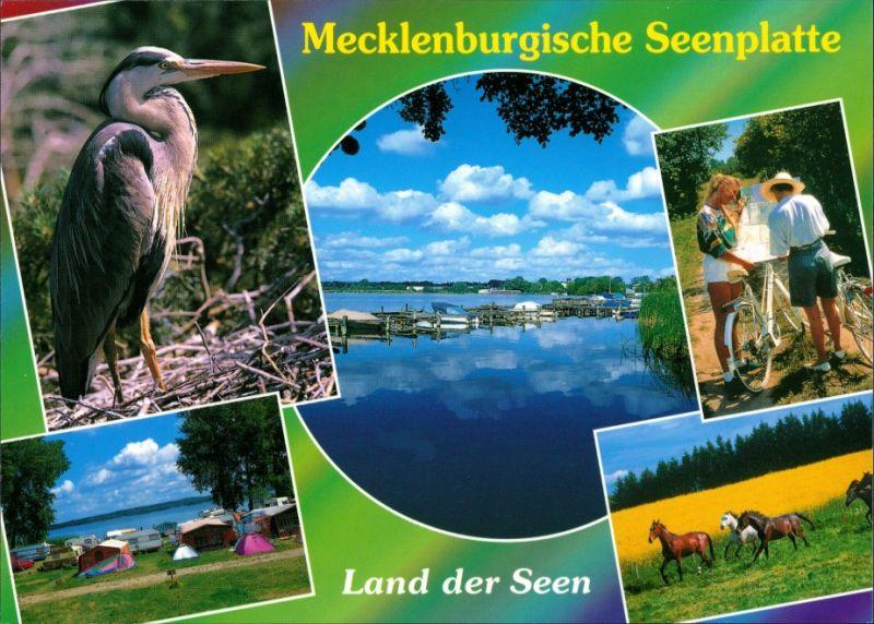 .Mecklenburg-Vorpommern Mecklenburgische Seenplatte, Fahrrad, Zeltplatz 1995 0