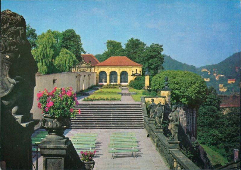 Postcard Tetschen-Bodenbach Decín Růžová zahrada/Rosengarten 1979