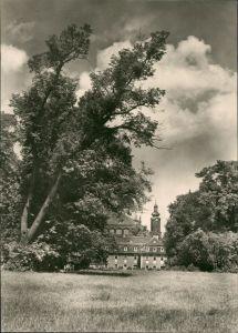 Ansichtskarte Weimar Deutschland - Thüringen - Weimar, Park Ansicht 1977