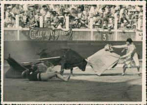 Ansichtskarte  Toroy Y Toreros, Stierkampfarena/Stierkampf 1955