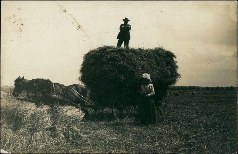 Berufe /Arbeit: Bauern - Landwirtschaft Bauer und Frau Heufuhre 1914 Privatfoto