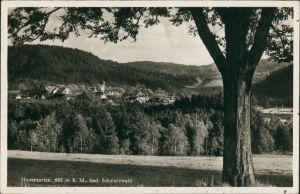 Hinterzarten Panorama-Ansicht Vogelschau-Perspektive des Ortes 1935