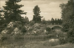 Ansichtskarte Dahlem-Berlin Botanischer Garten, Brücke 1928