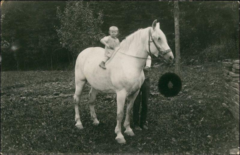 Foto  Kleiner Junge auf Pferd Schimmel 1913 Privatfoto