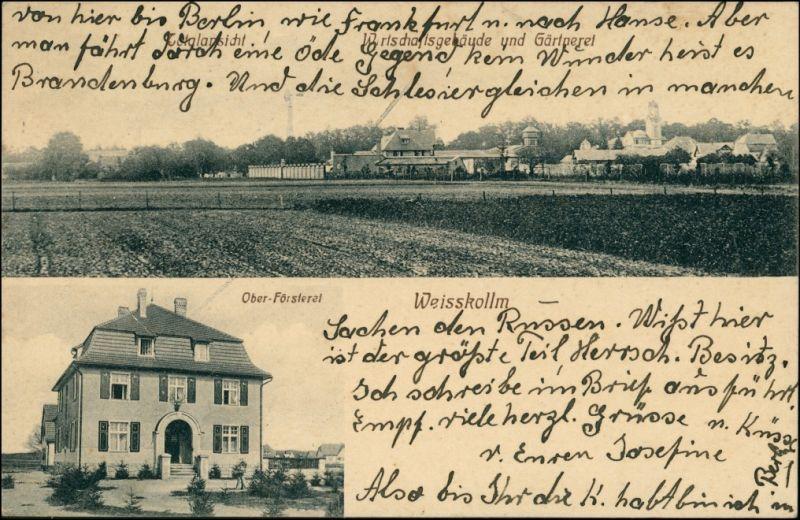 Weißkollm-Lohsa Běły Chołmc Łaz Försterei, Gärtnerei b Hoyerswerda 1916 0