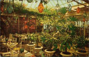 Clearwater (Florida) Patio Room at The KAPOK TREE INN, Botanik, Pflanzen 1960