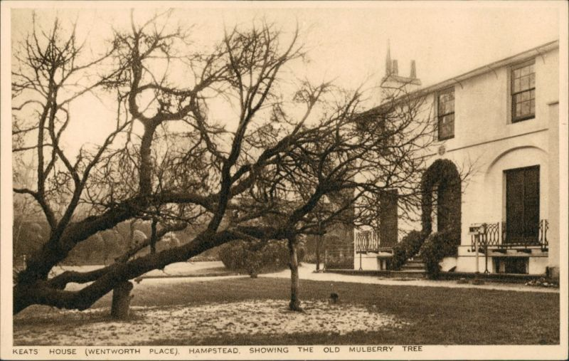 London KEATS HOUSE (WENTWORTH PLACE) HAMPSTEAD, MULBERRY TREE 1930