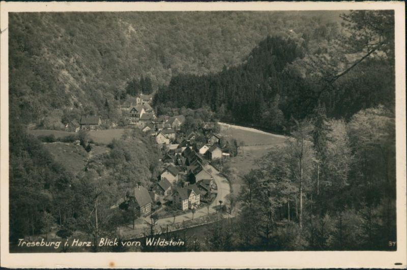 Ansichtskarte Treseburg Teilansicht auf Wohnhäuser, Blick vom Wildstein 1930