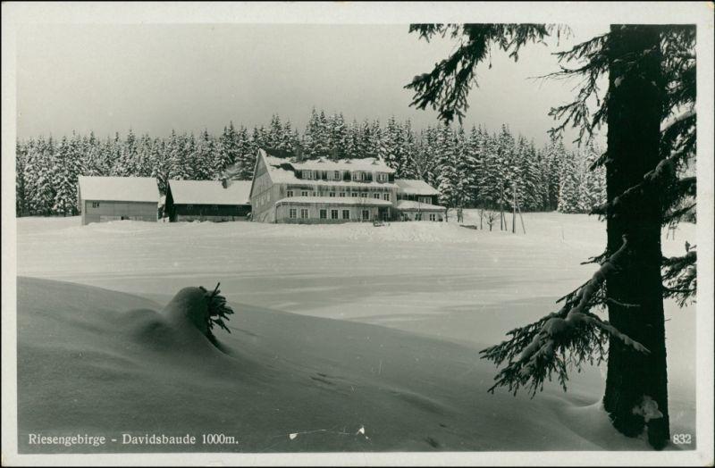 Spindlermühle Špindlerův Mlýn | Spindelmühle Davidsbaude im Winter 1930
