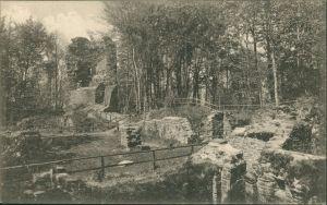Ansichtskarte Heidelberg Ruine der Michaels-Basilika auf dem Heiligenberg 1909