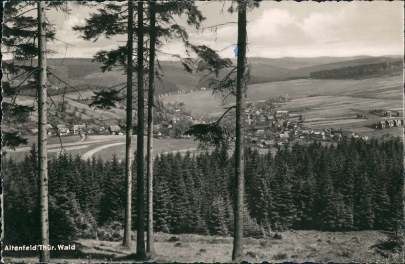 Altenfeld (Thüringen) Panorama-Ansicht Thüringer Wald Blick DDR Postkarte 1960