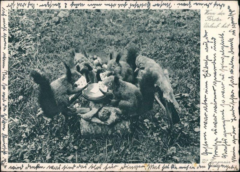 Waldtiere beim Skat Tiere als Menschen (Künstlerkarten) Andromorphische   1935