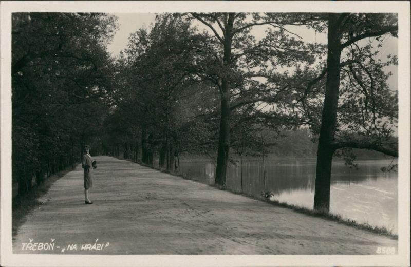 Postcard Třeboň Na Hrazi, Wald Weg am See mit Frau, Echtfoto-AK 1940