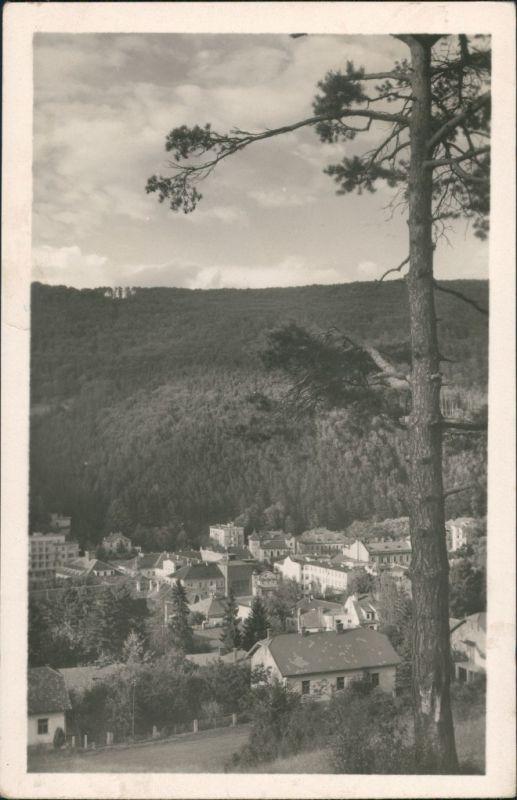 Teplitz-Schönau Teplice Panorama Teilansicht Häuser Gruppe Echtfoto-AK 1950
