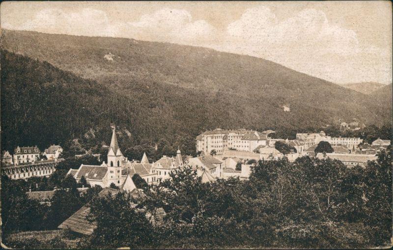 Trentschin-Teplitz Trenčianske Teplice Trencsénteplic Vintage Postcard 1920