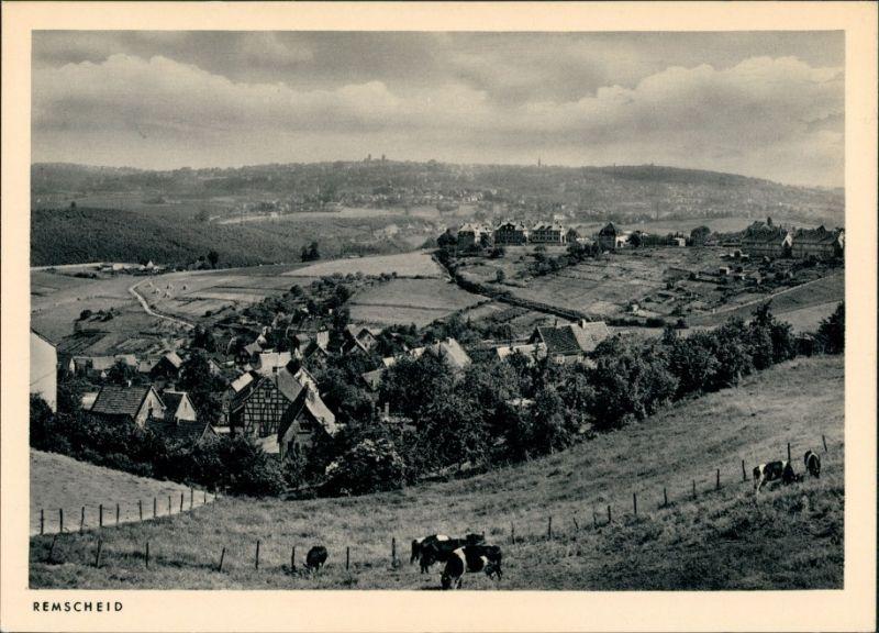 Ansichtskarte Remscheid Kühe, an der Stadt 1940