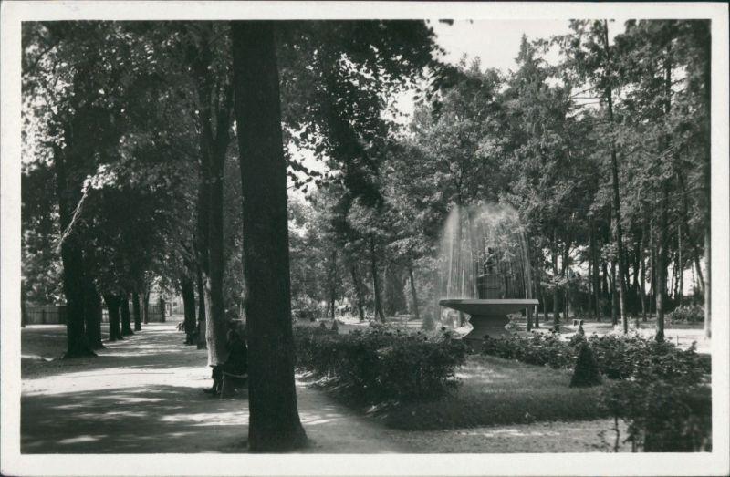 Tyrnau Trnava (Nagyszombat) Mestsky sad. Park Parkanlage Springbrunnen 1949