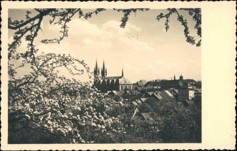 Postcard Eger Cheb Baumblüte - Blick auf die Stadt 1939