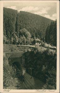 Ansichtskarte Oberhof (Thüringen) Brandleite Tunnel, Dampflokomotive 1928