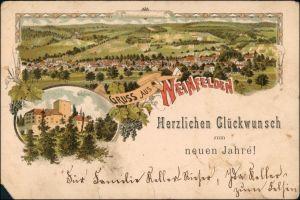 Ansichtskarte Litho AK Weinfelden Stadt und Schloß Gruss aus 1895