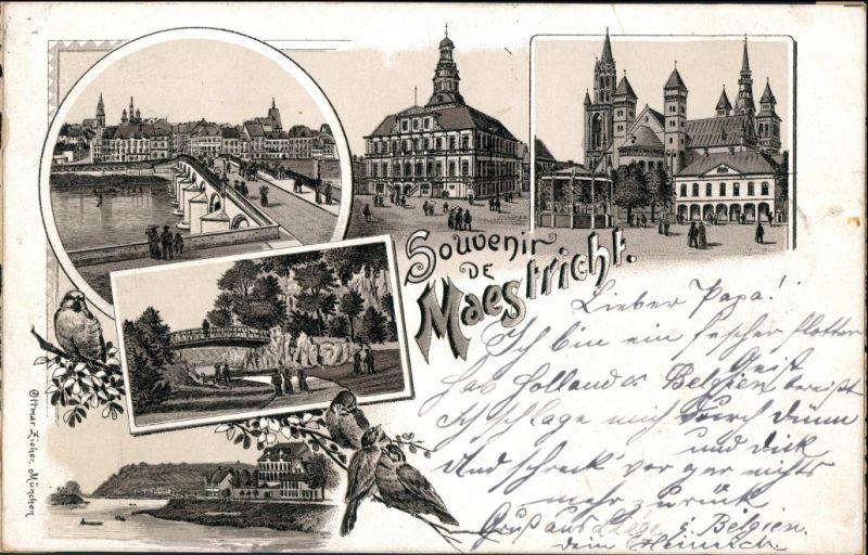 Postkaart Litho AK Maastricht Mestreech Stadt, Brücke, Park 1896