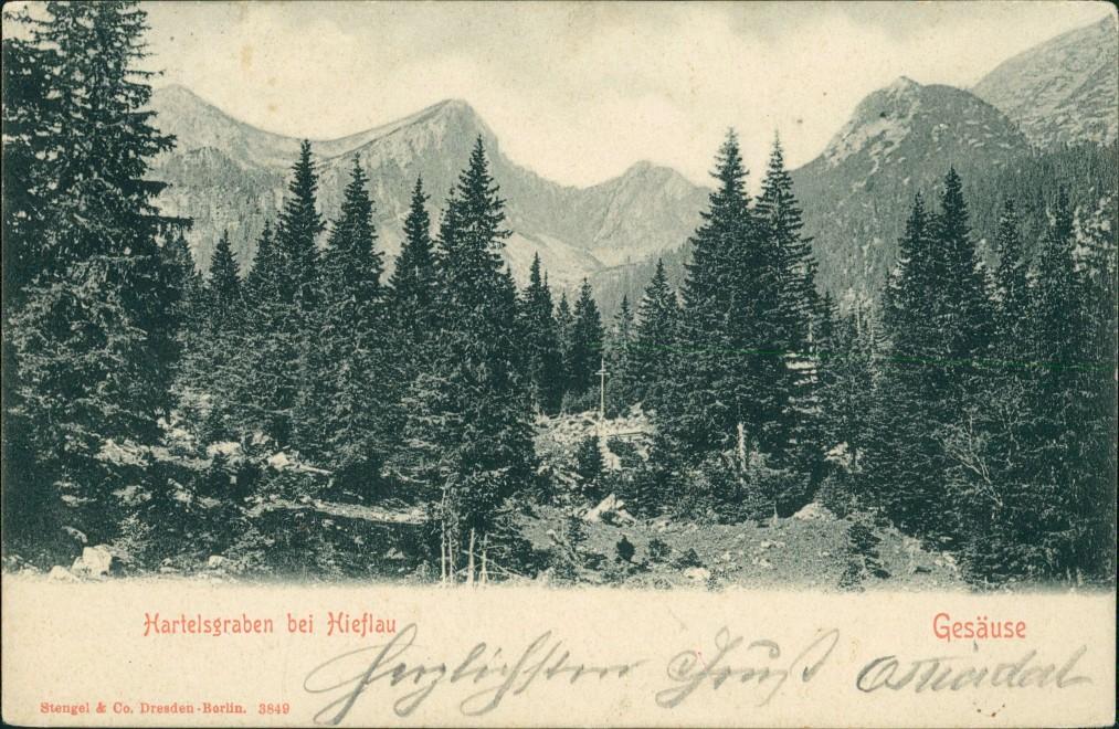 Hieflau-Landl (Bezirk Liezen)  Ansicht Hartelsgraben Hieflau Gesäuse 1907
