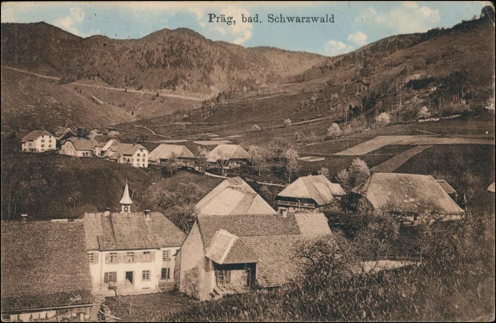 Ansichtskarte Präg-Todtnau Stadtpartie 1915