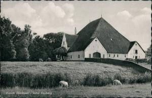 Ansichtskarte Husum Partie am Roter Hauberg, Bauernhof, Tiere, VW Käfer 1960