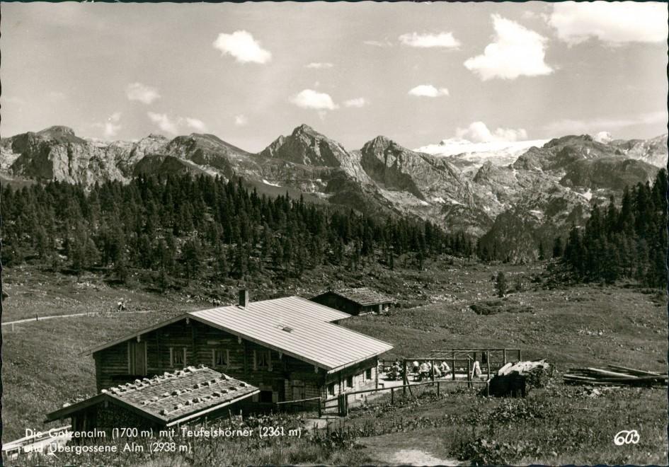 Ansichtskarte Berchtesgaden Gotzenalm (Berg, Berchtesgaden) 1964 0