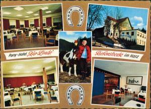 Riefensbeek-Kamschlacken-Osterode (Harz) Harzer Pferde-Paradies Pony-Hotel 1970