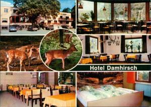 Neustadt am Rübenberge Hotel Damhirsch Restaurant Bes. Kempf, Innen & Außen 1970