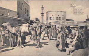 Tel Aviv-Jaffa תל אביב-יפו Tel Aviv-Jafo Straßenbild  - Kamele 1913