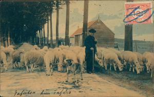 Ansichtskarte  Straßenpartie - Schäfer und Schafe 1923