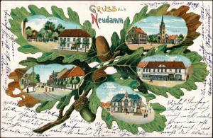 Litho AK Neudamm (Neumark) Dębno MB: Gasthöfe Eichenlaub 1908