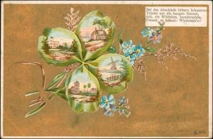 Kleeblatt - Goldkarte Windmühle Feilchen 1906 Privatfoto Goldrand