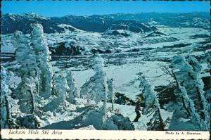 Jackson Hole Ski Area Panoramic Valley View/Wintersport Motivkarte 1974