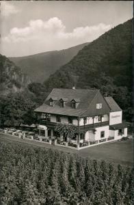 Walporzheim-Bad Neuenahr-Ahrweiler Bauernschenke Gaststätte Vogelschau 1960