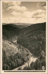 Ansichtskarte Kirnitzschtal-Sebnitz Tanzplan 1929 Walter Hahn:3515