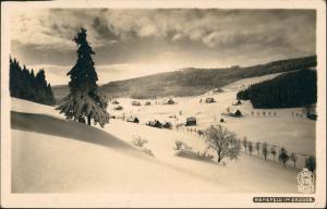 Rehefeld-Altenberg (Erzgebirge) Stadt im Winter Erzgebirge 1925 Walter Hahn:6188