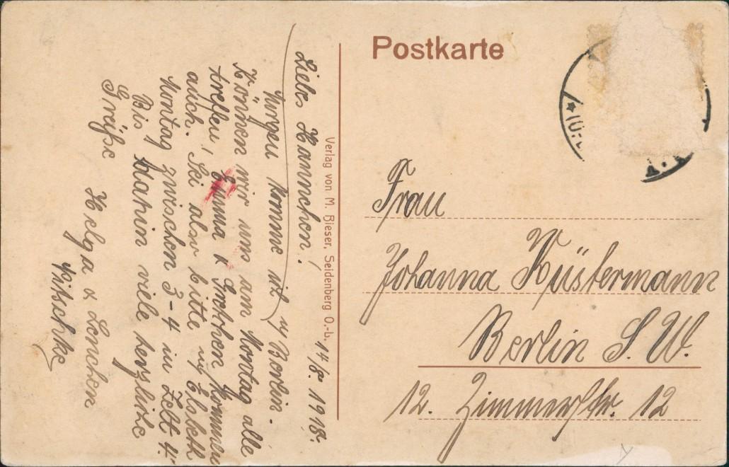 Postcard Seidenberg Zawidów Auf dem Burgsberg 1918 1