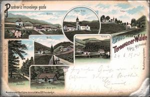 Litho AK Görz Gorizia (Gorica / Gurize) Ternover Wald Küstenland 1900