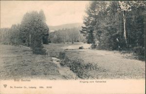 Ansichtskarte Bad Sachsa Partie mit Eingang zum Katzenthal Katzental 1904