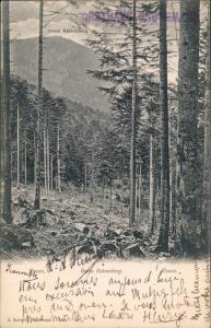Schirmeck Umland-Ansicht am Gross Katzenberg, Elsass - Alsace 1910