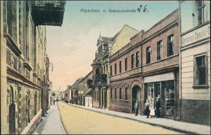 Postcard Pleschen Pleszew Breslauerstrasse Oberschlesien 1911