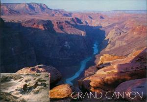 Postcard Grand Canyon - USA GRAND CANYON NATIONAL PARK 2000