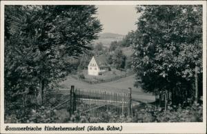 Ansichtskarte Hinterhermsdorf-Sebnitz Blick auf die Stadt 1952